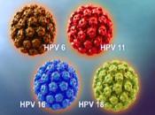 Meer HPV versies